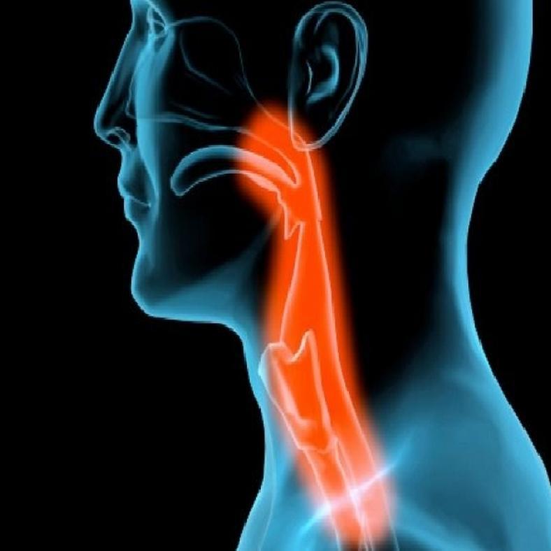 choroid plexus papilloma kezelése típusú parazita férgek emberben