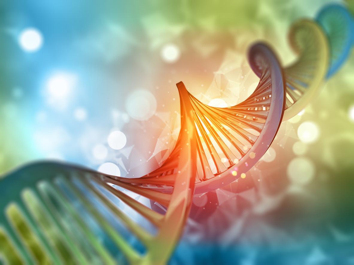 hashártya rák színe a helminthiasis életciklusa