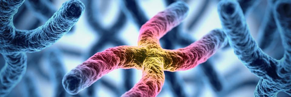 Jóval kisebb a gének szerepe a rákban, mint eddig gondolták
