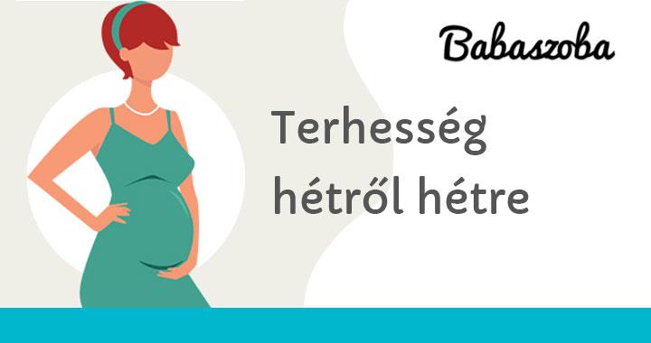 vérszegénység 30 hetes terhes