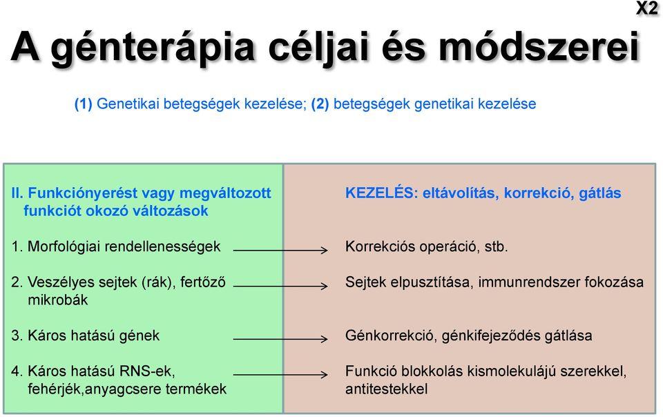 neuroendokrin rákhálózat