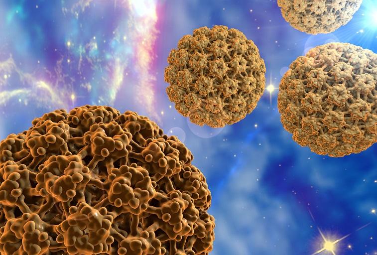 papilloma vírus képek