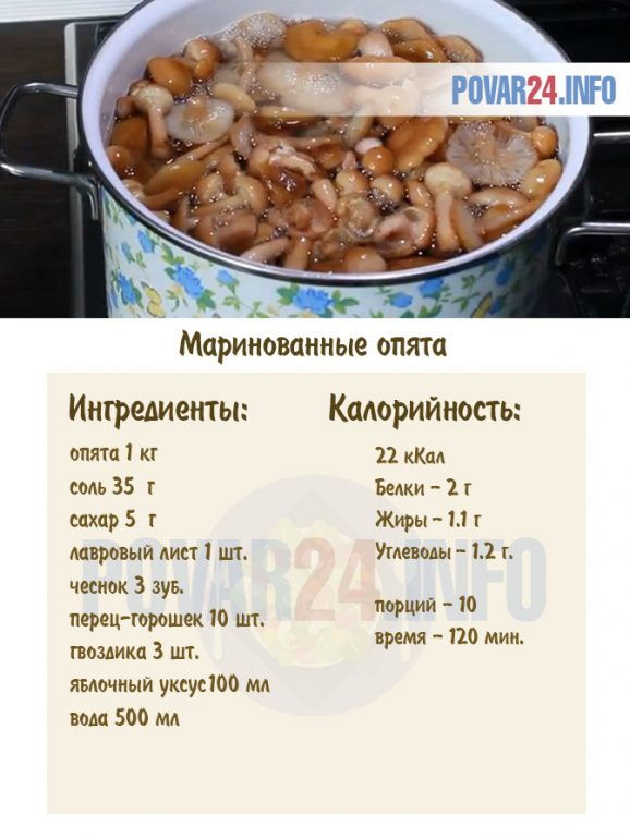 gomba 100 g kalória