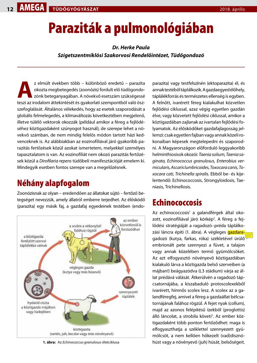 a helminthiasis életciklusa hpv szemölcs papilloma