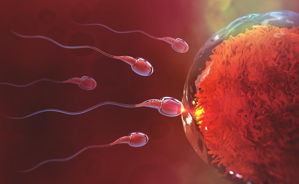 hogyan kell kezelni a petesejteket