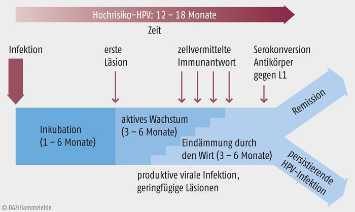 prosztatarák szűrése papilloma vírus torok tünetei