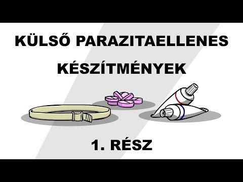 parazitaellenes rendszer platyhelminthes flatworms ppt