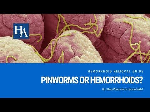 pinworms kérdéseket válaszol